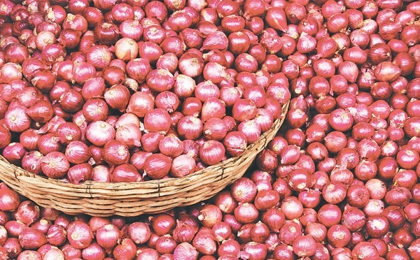 Onion price reduces by 50 per cent | Corporate Nepal