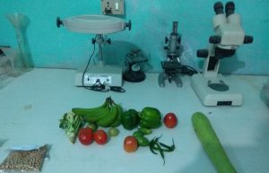 Quarantine-laboratory-vegetable
