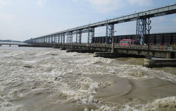 Water level of Koshi rose to alarming situation, All sluice gates of barrage opened